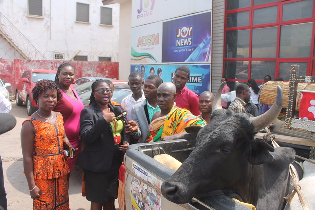 A chief came to present a cow to Adom TV because of Kumkum Bhagya